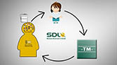 SDL Multilingual, Innovation - Video-Präsentation mit Casting, für Online-Shop